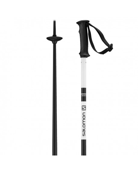 Bâtons de ski L40559300